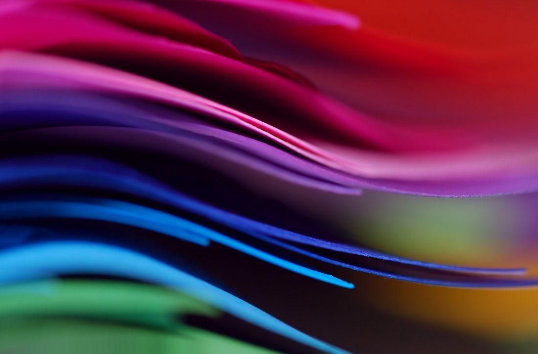 Какви интересин факти можем да научим за цветовете?